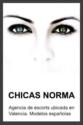 banner-norma